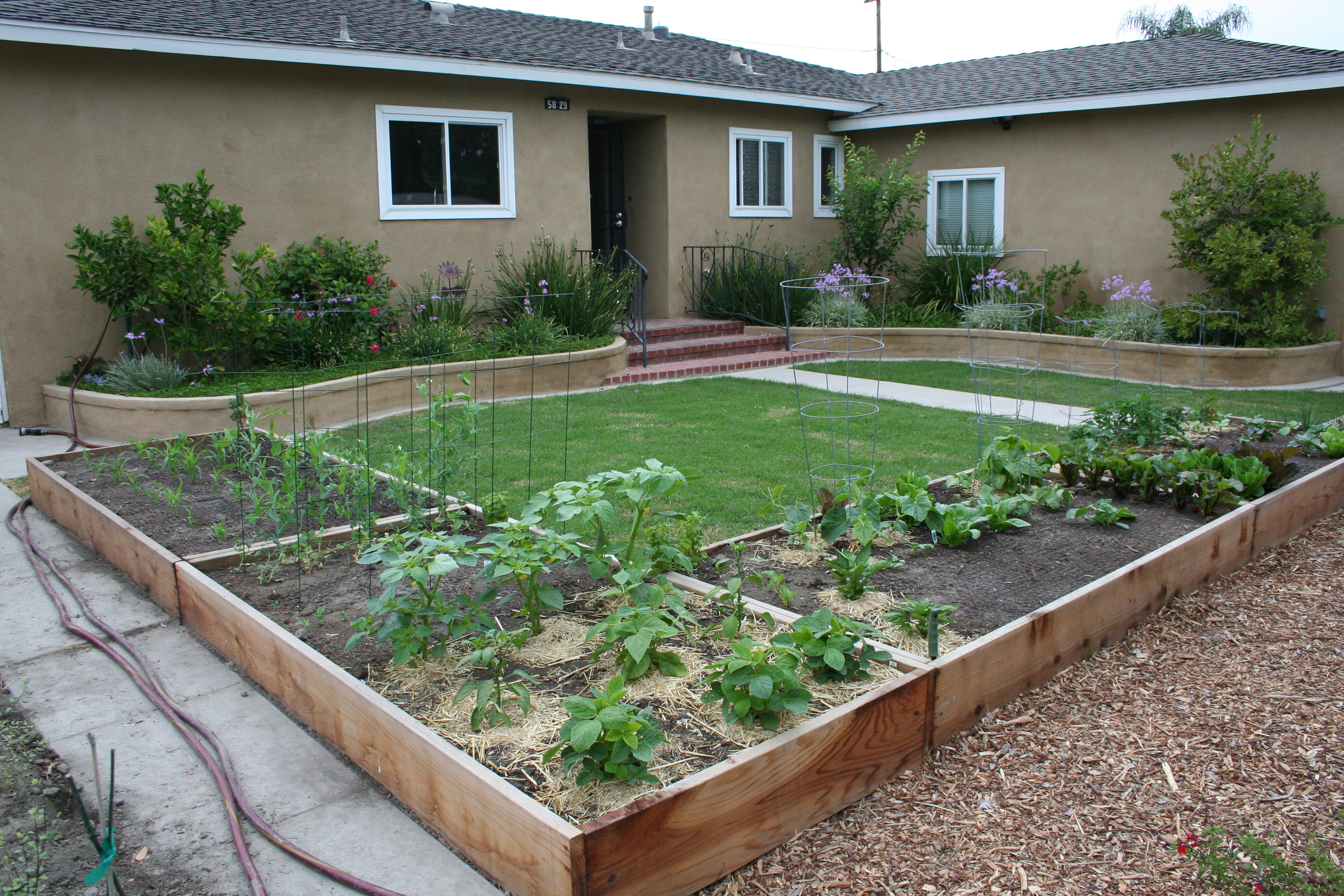 Front Yard Vegetable Garden Ideas small front yard vegetable garden ideas small front yard