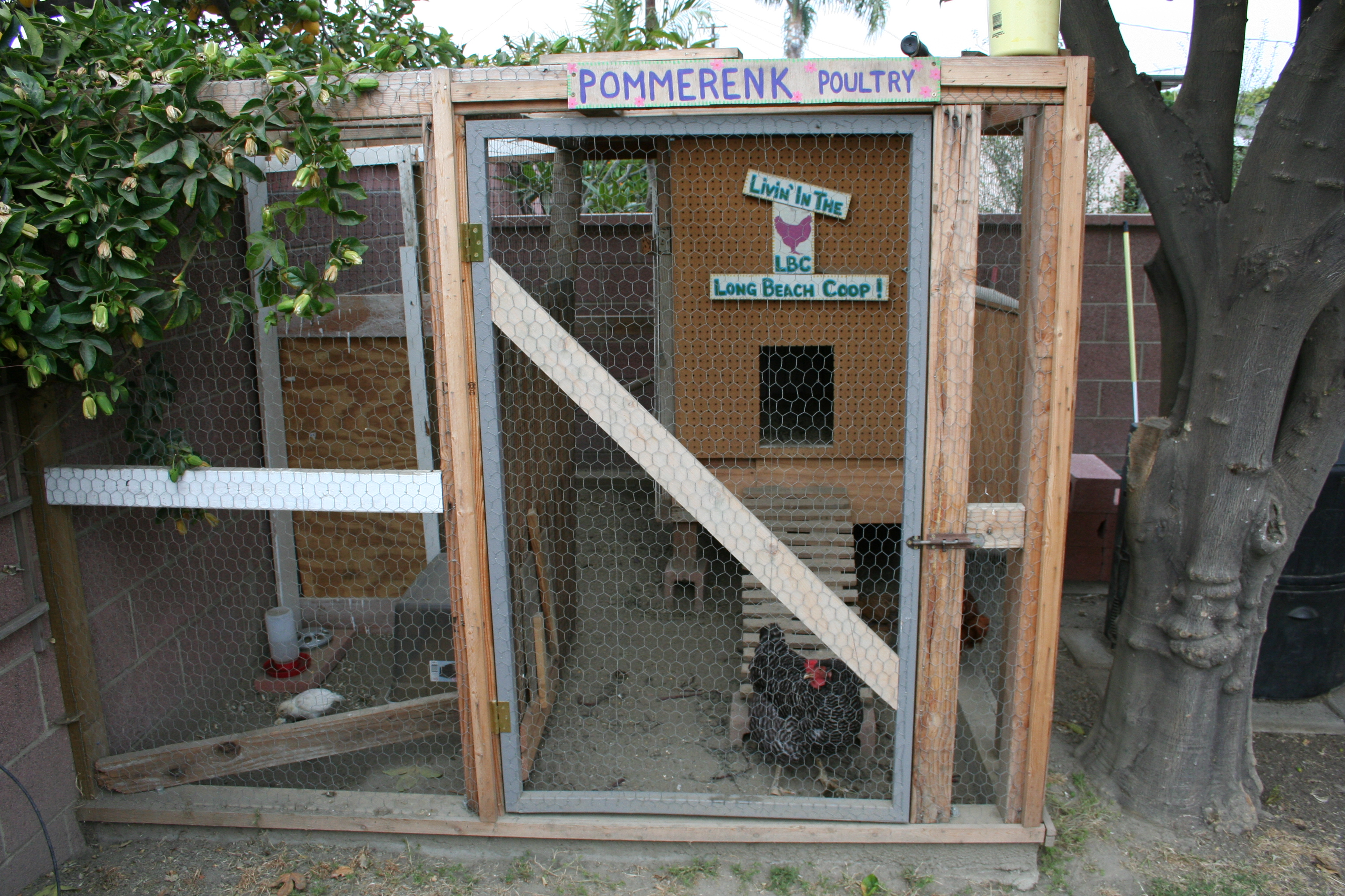 Awesome Backyard Chicken Coop